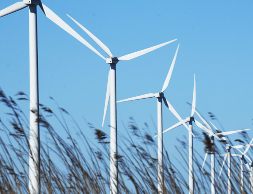 Greenchoice & Certin: een duurzame visie op credit management